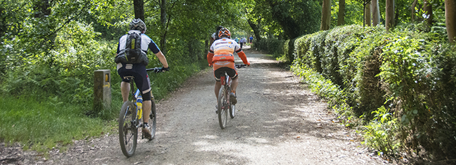 El Camino de Santiago en bicicleta