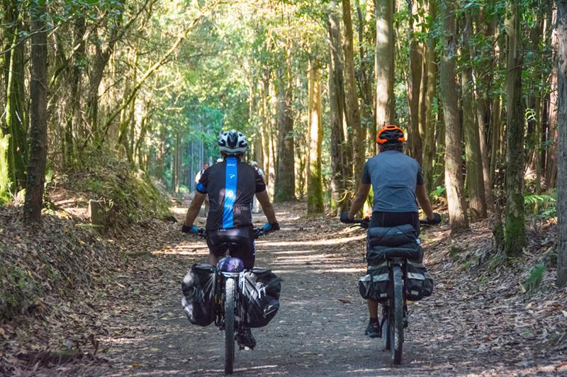El Camino en bicicleta desde LEÓN