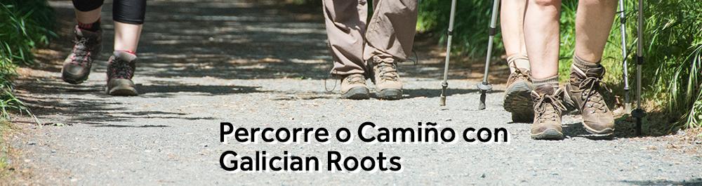 Percorre o Camiño con Galician Roots