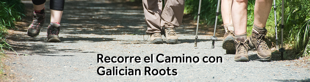 Recorre el Camino con Galician Roots