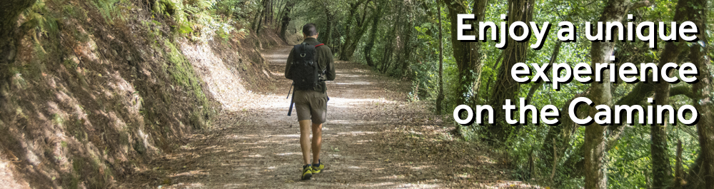 Enjoy a unique experience on the Camino with Galician Roots